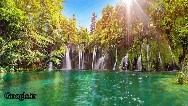 طبیعت و جنگل