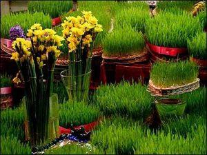سبزه عید نوروز